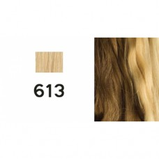 European human hair colour 613